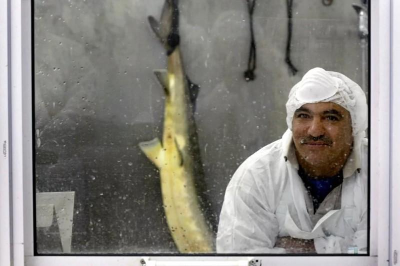 Работник кибуца во время перерыва