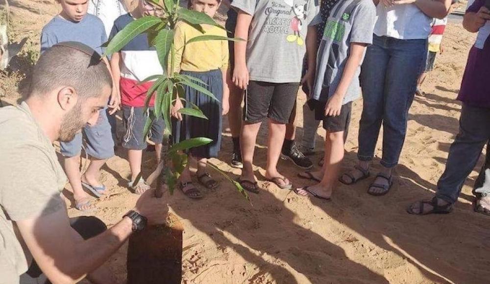 Воспитанники детского сада в кибуце сажают деревья в воронки от ракет ХАМАС